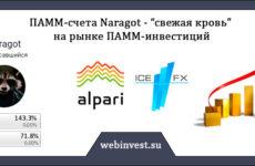 ПАММ-счета Naragot — «свежая кровь» на рынке ПАММ-инвестиций
